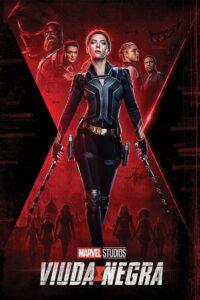 Black Widow «Viuda negra»